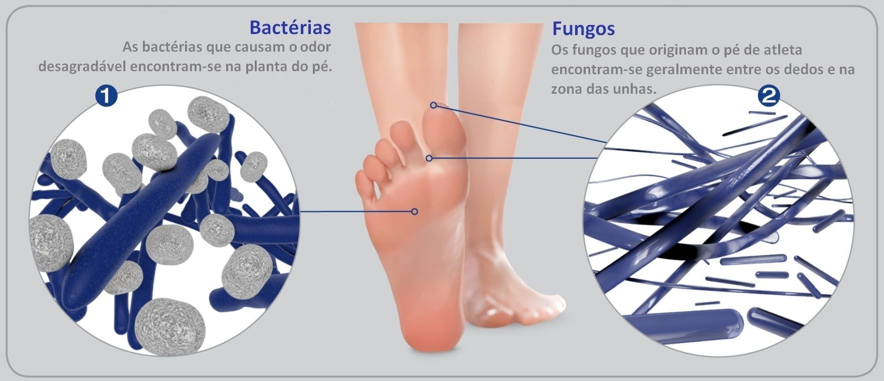footcare_update_PT